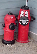 Aaron's fire hydrant collection.