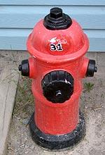 fire hydrant lawn ornament.